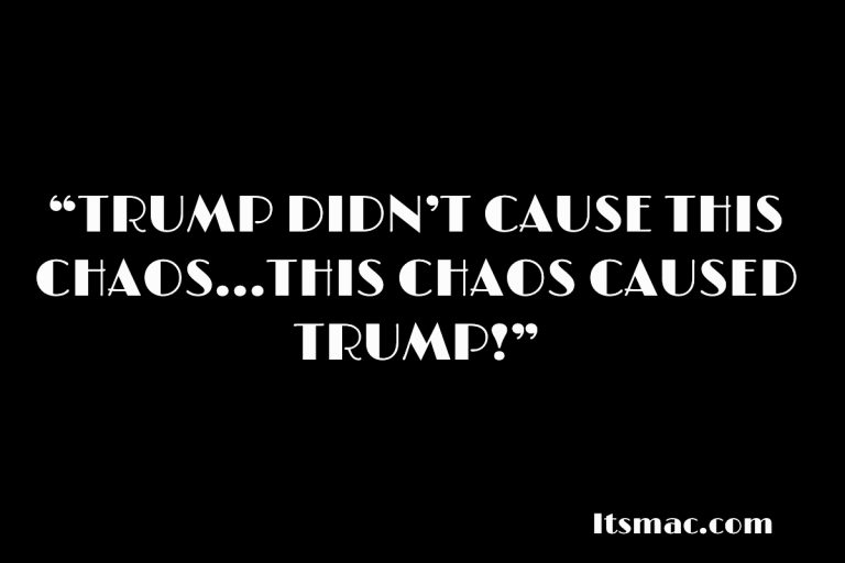 "DEMS SAY, ""TRUMP DIDN'T CAUSE THIS CHAOS…THIS CHAOS CAUSED TRUMP!"""