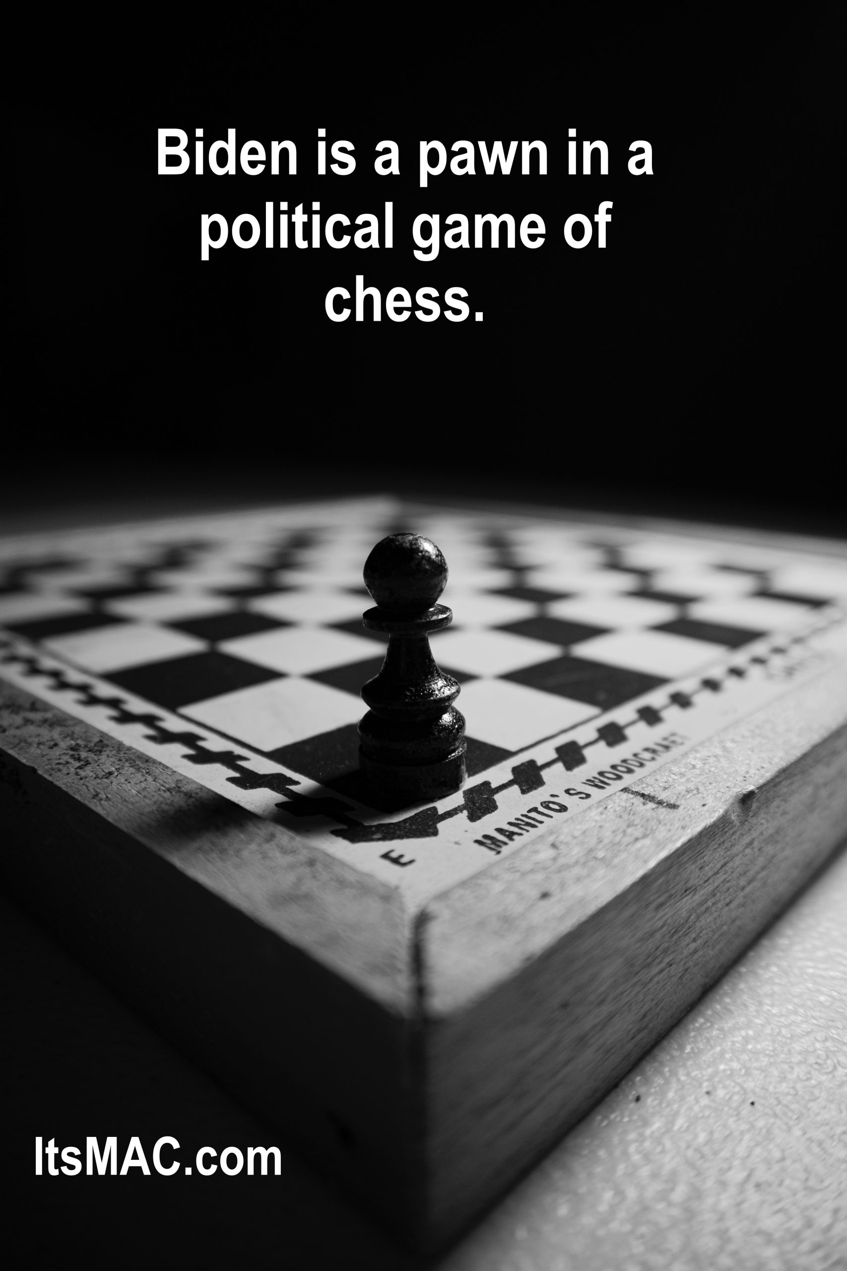 BIDEN IS A PAWN! THE DEMOCRATS WANT TO BURN DOWN REPUBLICANS UNTIL THERE ARE NO SURVIVORS!