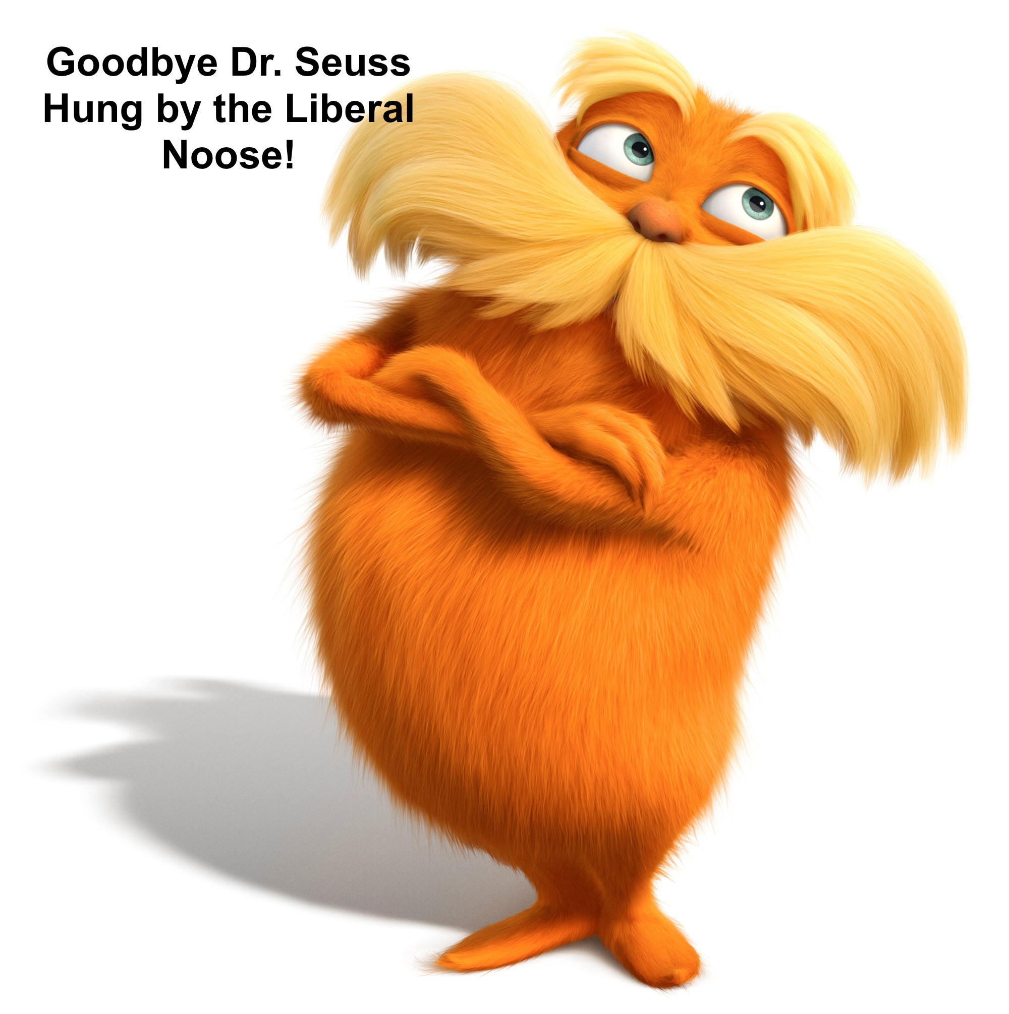 DR. SEUSS THE LORAX, THE THNEED AND THE LIBERAL MISDEED.  GOODBYE DR. SEUSS, HELLO LIBERAL NOOSE
